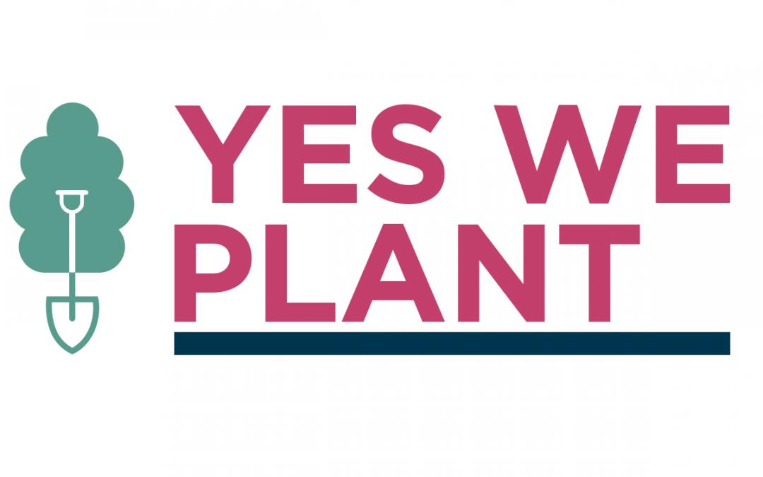 #YesWePlant: le challenge pour planter 4 000 km de haies ou 1 million d'arbres